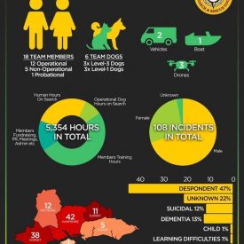 Photo of Hampshire search and rescue dogs 2020 report